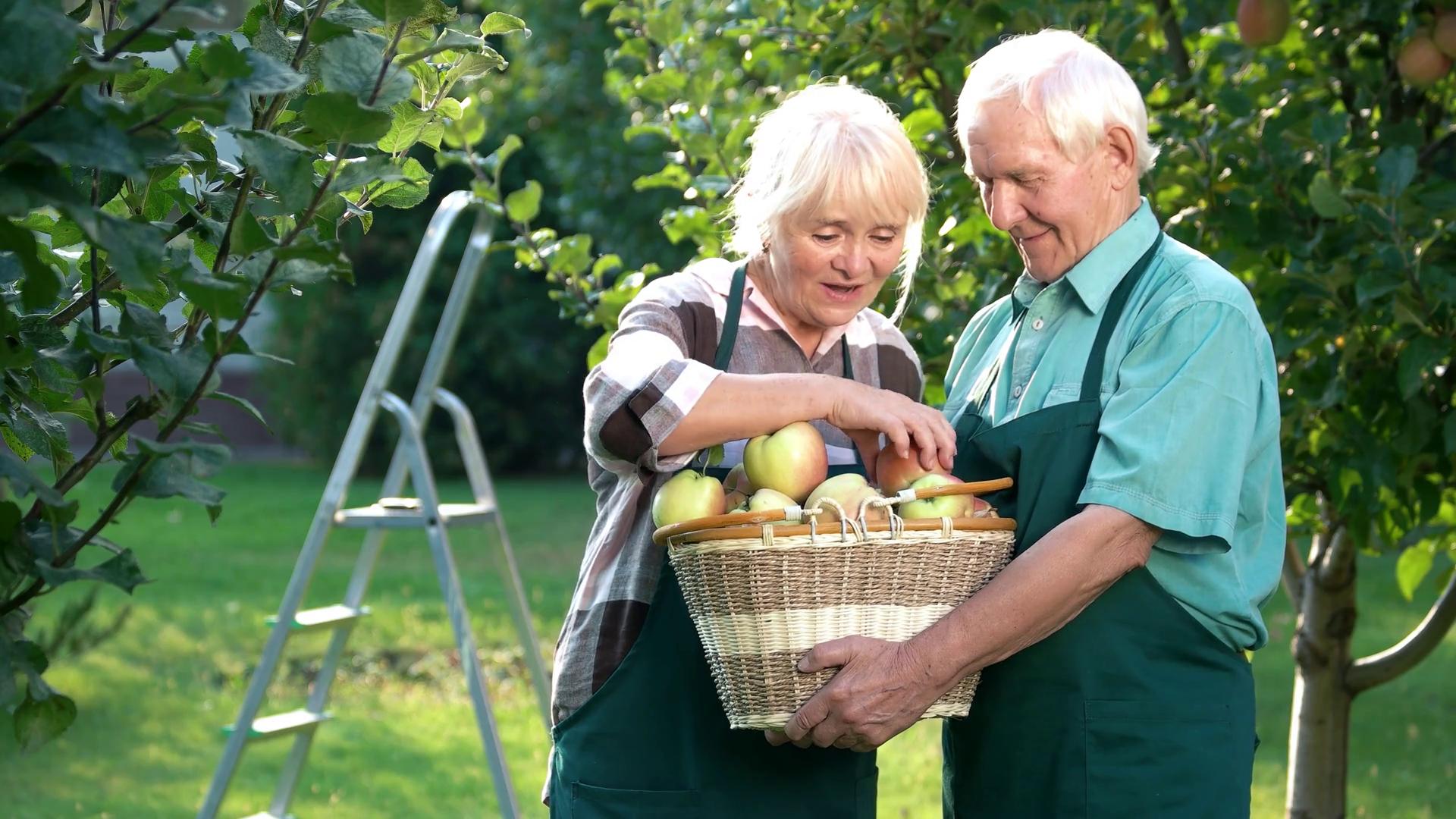 videoblocks-elderly-couple-holding-apple-basket-happy-woman-and-man-outdoors-how-to-grow-fruits_sdoyygptl_thumbnail-full01