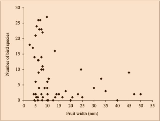 Bird predation given fruit width.png